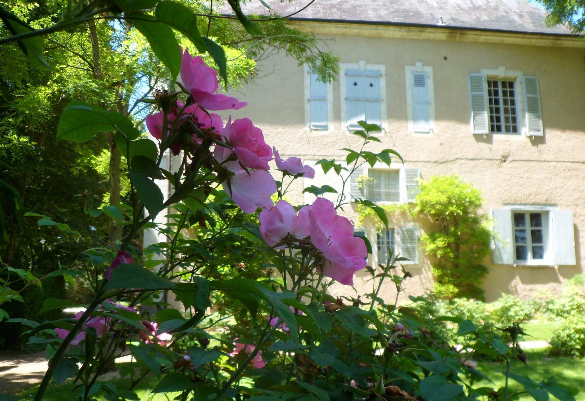Nohant en été fleuri